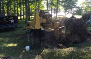 Traverse City Stump Grinding